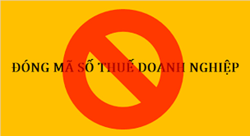dong-ma-so-thue